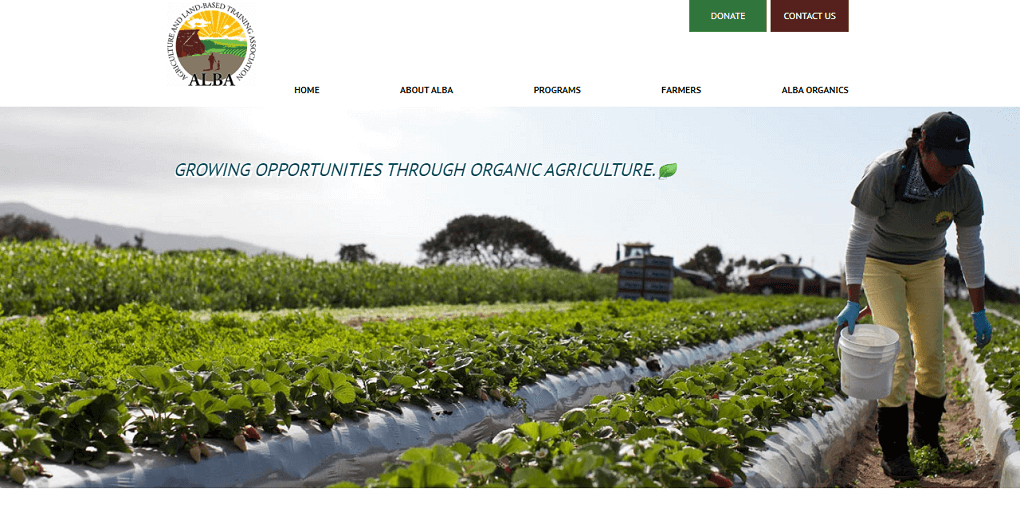 Alba Farmers Web Design