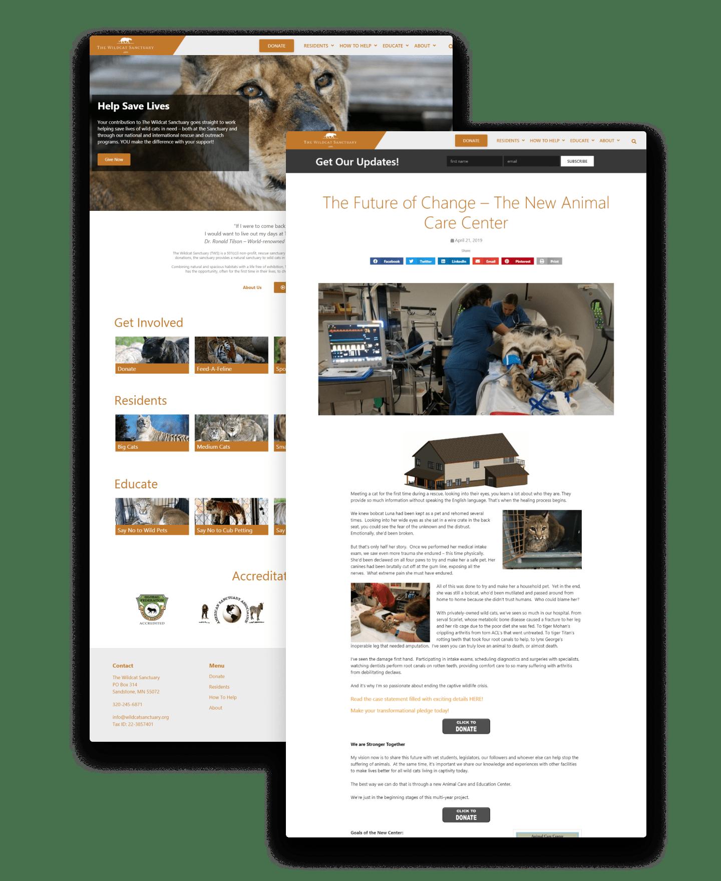 Designs-Image-Wildcat
